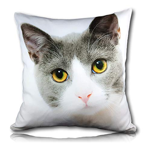 Personalised Cushion Cover Printed Photo Gift Custom Made Large 37cm Print (16' x 16') Pet, Dog, Cat