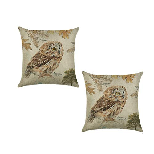 SK Studio 18' Pillowcases Sofa Bed Home Car Decor Throw Pillow Case Cushion Cover Owl Illustration 2 Packs