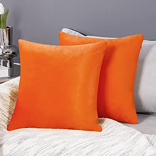 Deconovo Halloween Decoration Set of 2 Cushion Protectors Crushed Velvet Cushion Covers 50cm x 50cm 20x20 Inches Throw Pillow Cases Cushion Covers for Girls with Invisible Zipper Orange