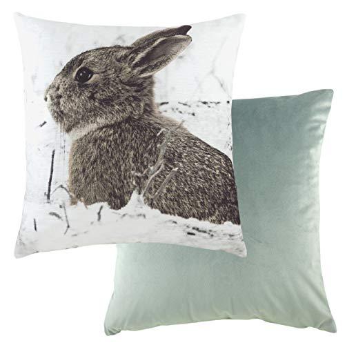Evans Lichfield Photo Hare Cushion Cover, Multi, 43 x 43cm
