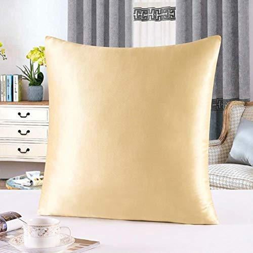 25Momme 100% Silk Cushion Cover Decorative Pillows 40x40cm 60x60cm Pillow Cover Home Decoration Funda Cojin For Living Room