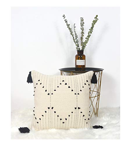 LIGICKY Decorative Boho Tassel Throw Pillow Covers for Couch Sofa Bedroom Living Room Home Decoration, Square Woven Cotton Cushion Cover Modern Black and White Pillow Cases, 18 x 18 Inch