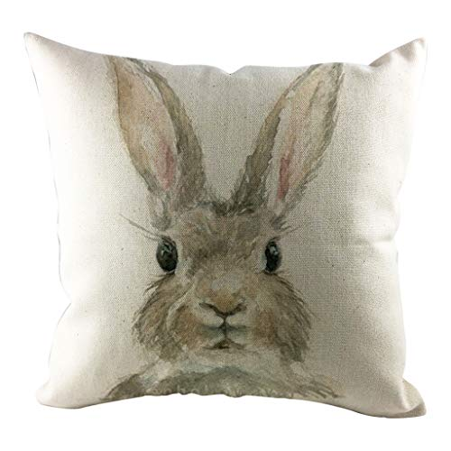 Cushion Cover 45x45 cm,HUHU833 Easter Rabbit Throw Pillow Case Soft Square Cushion Cases Festival Home Decoration Pillowcase for Sofa,Car,Bed (B)