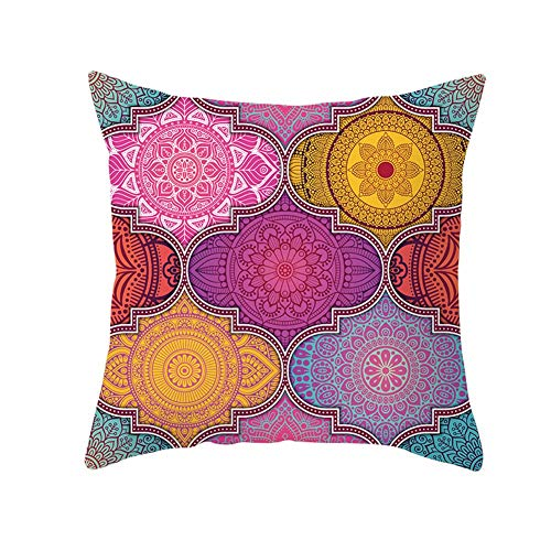 Throw Pillow Cases Cushion Covers the Flowers Are Brightly Colored Velvet Square Double-sided Throw Pillow Covers with Invisible Zipper for living Room Sofa Pillowcase V7092 Pillowcase+core,60X60cm