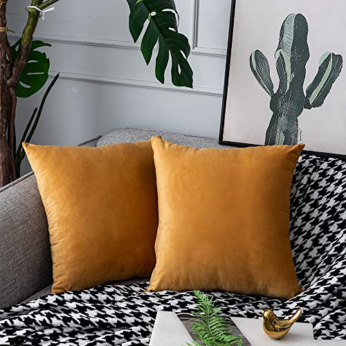 UPOPO Set of 2 Velvet Cushion Covers Decorative Plain Cushion Soft Cushion Cover Decorative Cushion Sofa Cushion for Sofa Couch Bedroom Living Room with Zips 50 x 50 cm Orange