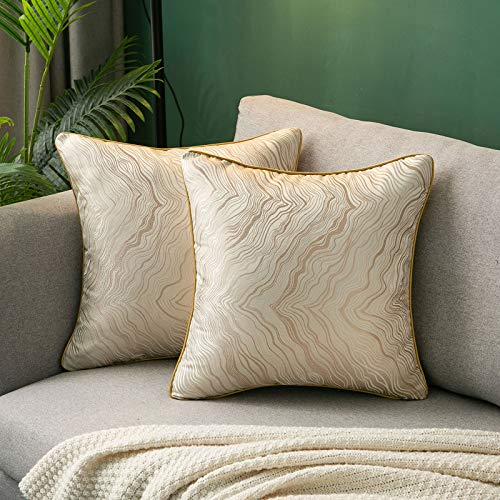 Hanrunsi Decorative Cushion Cover Set Pillow Cases 2 Pack Large Cushions for Sofa Silk Pillowcase Cushions 45cm x 45cm(18 x 18 inch) for Sofa Bedroom Car