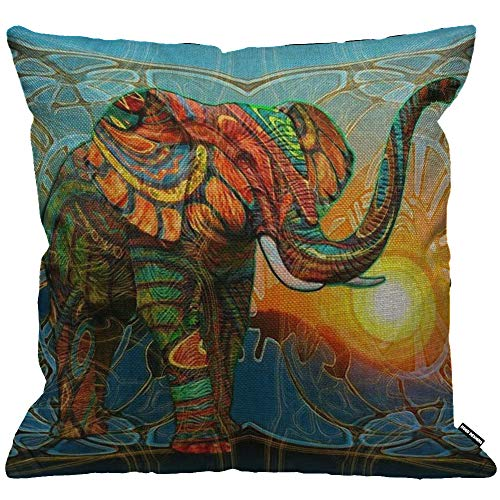 HGOD DESIGNS Cushion Cover Colorful Elephant Painting Sunset Throw Pillow Cover Home Decorative for Men/Women/Boys/Girls Living Room Bedroom Sofa Chair 18X18 Inch Pillowcase