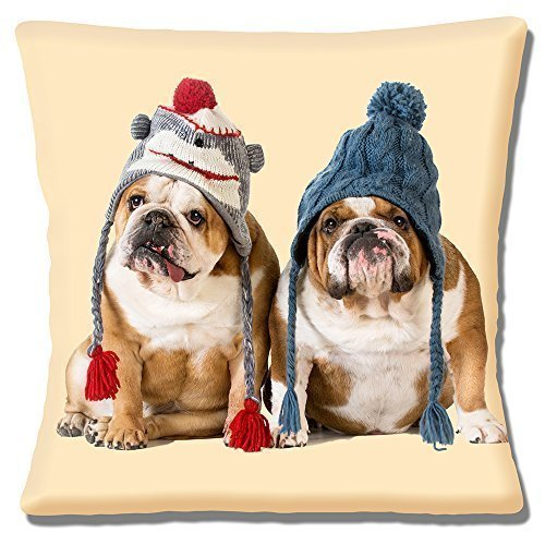 Two English Bulldogs wearing knitted hats on Cream - 16' (40cm) Pillow Cushion Cover