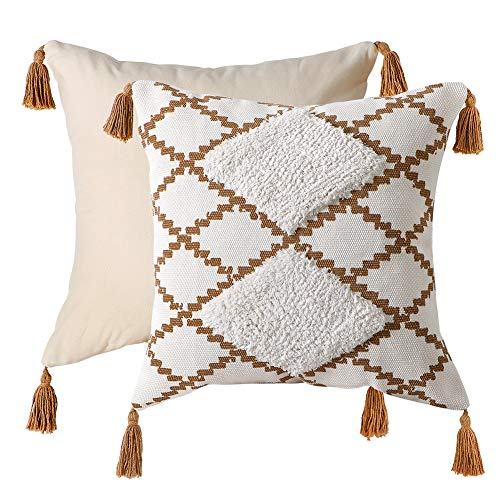 LOMOHOO Throw Pillow Cover,45x45cm Bedding Pillowcase for Couch Sofa Bed,Cotton Square Pillow Case with Tassels,Decorative Euro Cushion Case,Boho Cushion Pillow for living room,18x18 Inch(1pc)