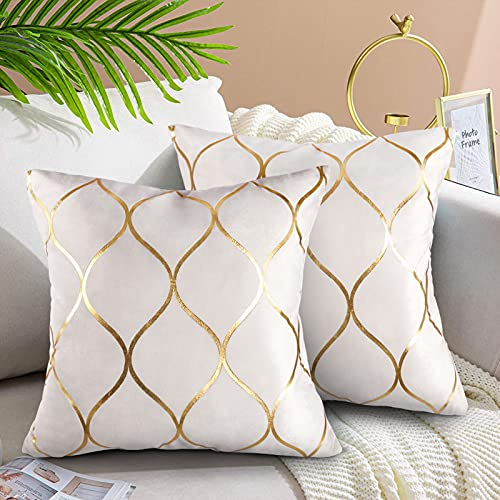 Velvet Cushion Covers 18x18 Decorative Velvet Sofa Cushions 2 Pack Soft Pillowcases Golden Painted Decorative Throw Pillow Cases White for Sofa Couch Living Room