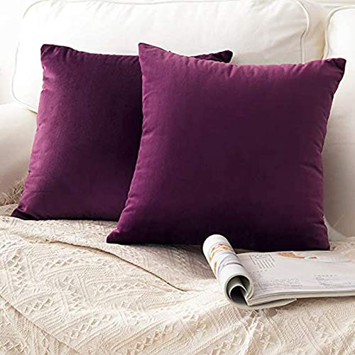 CCRoom Cushion Covers,Pack 2 of 45cm x 45cm Decorative Throw Pillow Cases in Velvet Square with Concealed Zip(Eggplant Purple)