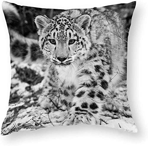 Giftme Snow Leopard Cushion Cover for Bedroom/Sofa Car Chair Decor, 45 Cm X 45 Cm Linen Cushion Cover, Throw Pillow Cushion Cover.