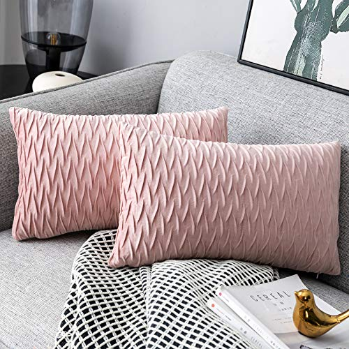 Yamonic Pack of 2 Cushion Cover Super Soft Velvet Pillow Covers Square Decorative Pillowcase for Sofa Bed Couch Bench, 12 x 20 inch, Pink